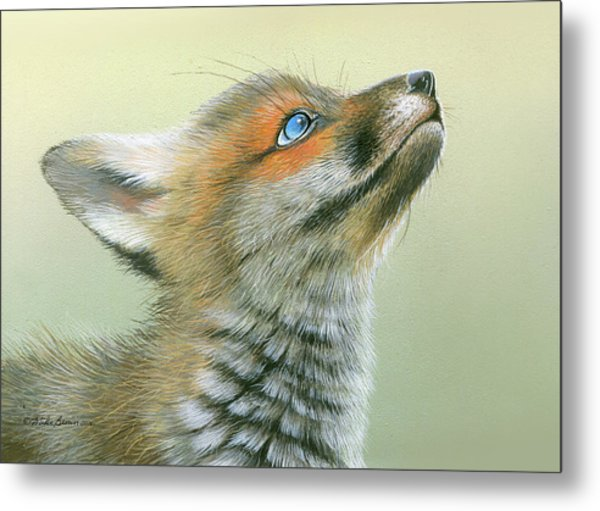 Starry Eyes Metal Print