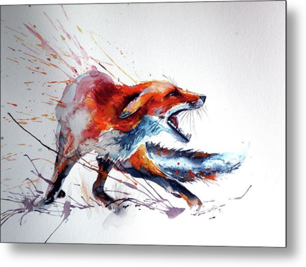 Startled Red Fox Metal Print