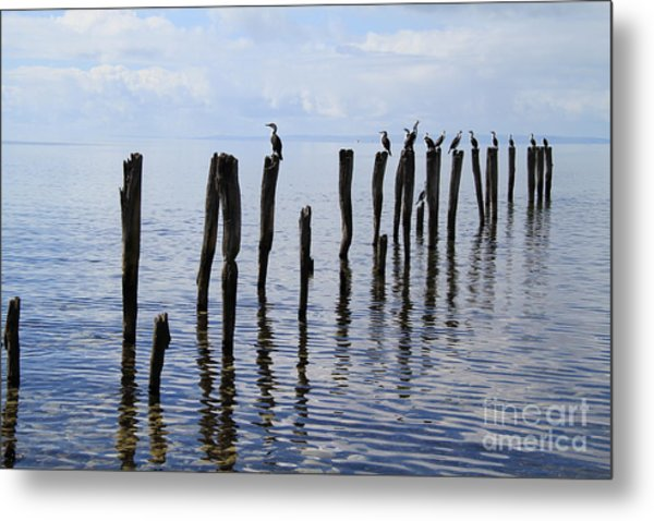 Metal Print featuring the photograph Sticks Out To Sea by Stephen Mitchell