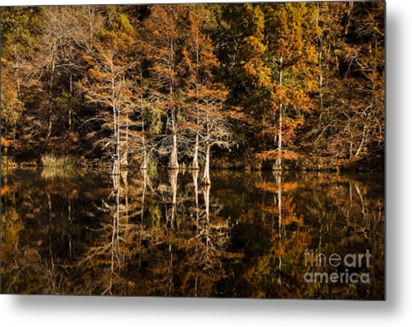 Still Waters On Beaver's Bend Metal Print