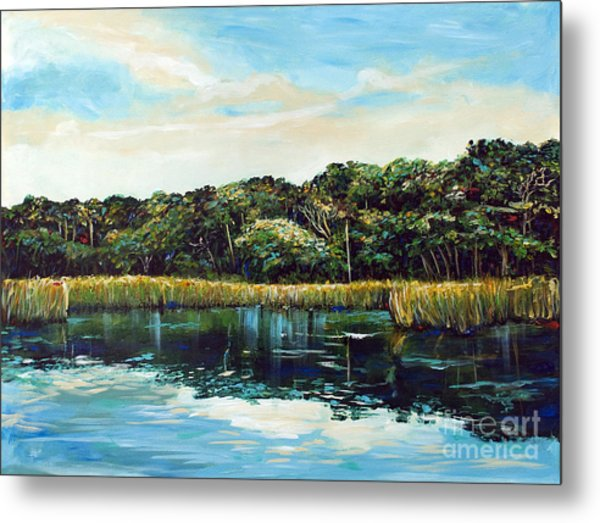 St.johns River Metal Print