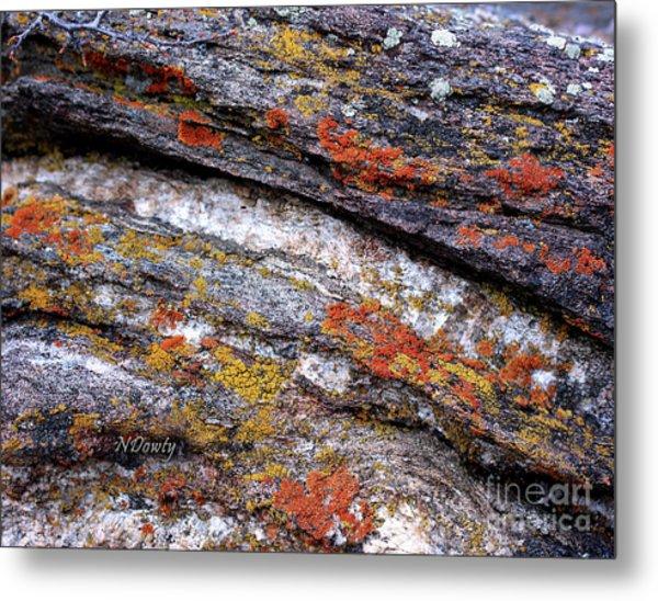 Stone And Lichen Metal Print