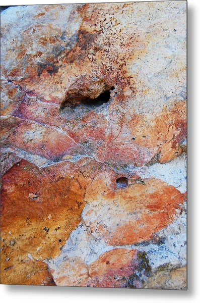Stone With Fossil Metal Print