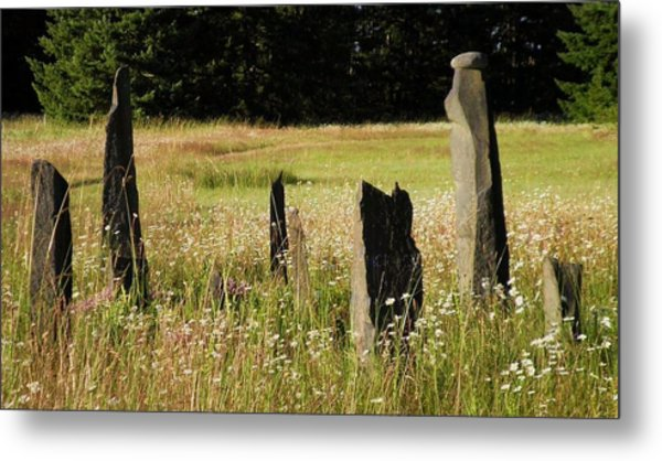 Stones In Summer Metal Print by Donna Meadows