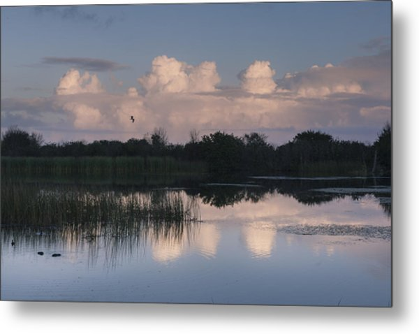 Storm At Sunrise Over The Wetlands Metal Print