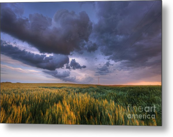 Storm Clouds Over Barley Metal Print
