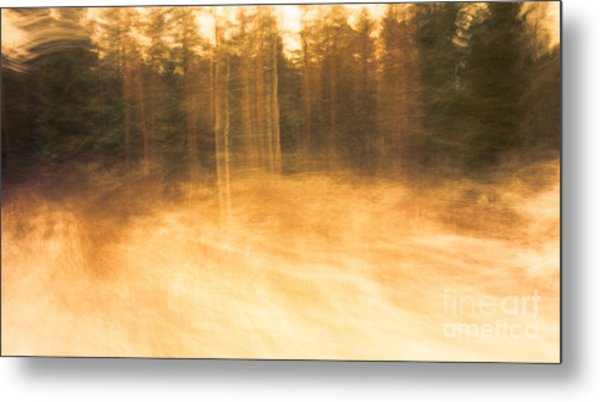 Storm In The Forest Metal Print