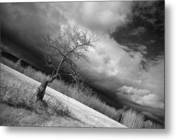 Storm Over Dead River Metal Print