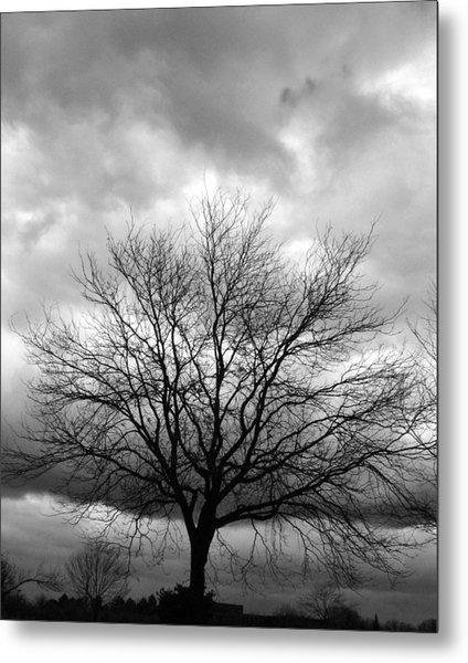 Stormy 2 Metal Print