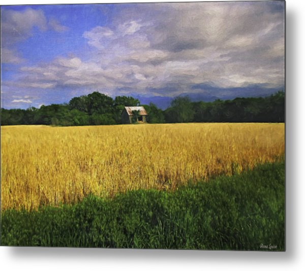 Stormy Old Barn In Wheat Field 2 Metal Print