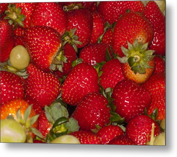 Strawberries 731 Metal Print