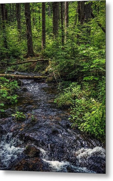 Streaming Metal Print