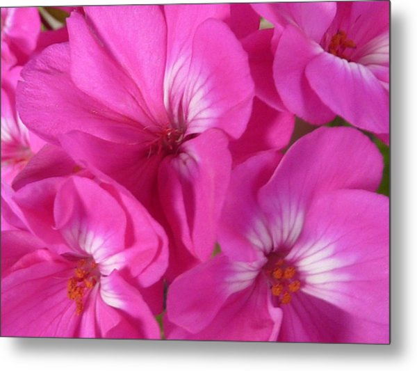 Strength And Beauty Metal Print