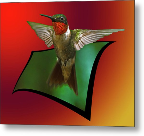 Metal Print featuring the photograph Stretching My Wings by Robert L Jackson