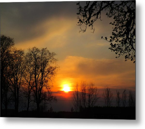Striking Beauty Metal Print