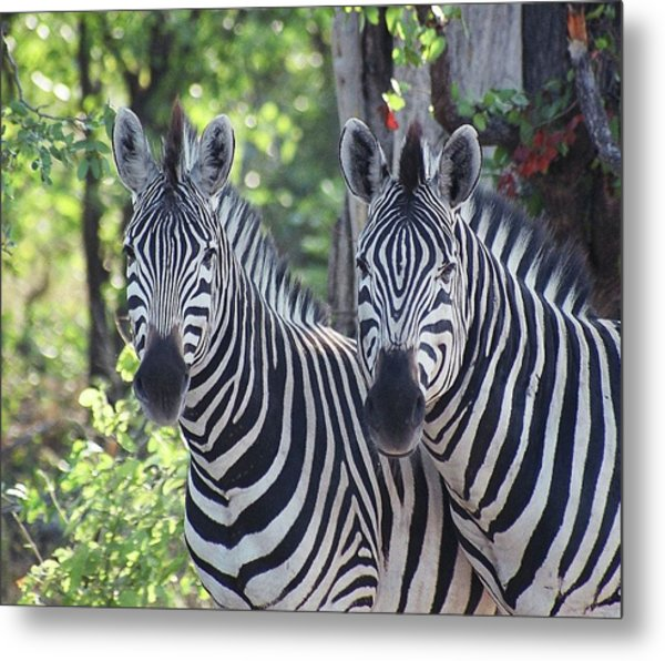 Stripes And Ovals Metal Print