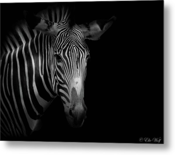 Stripes Number 5 Metal Print