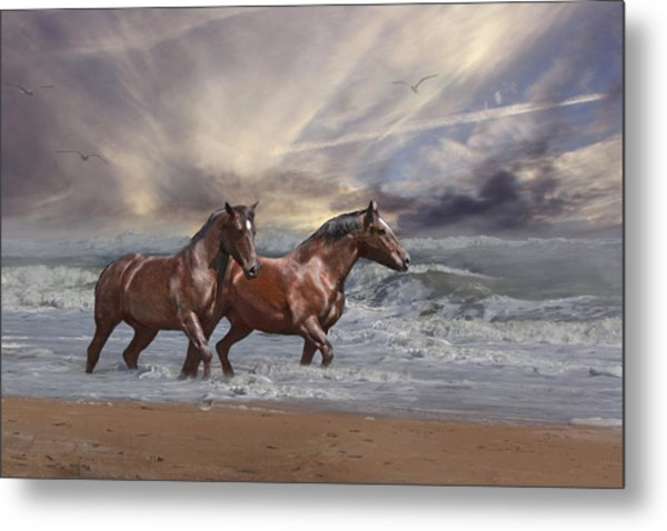 Strolling On The Beach Metal Print