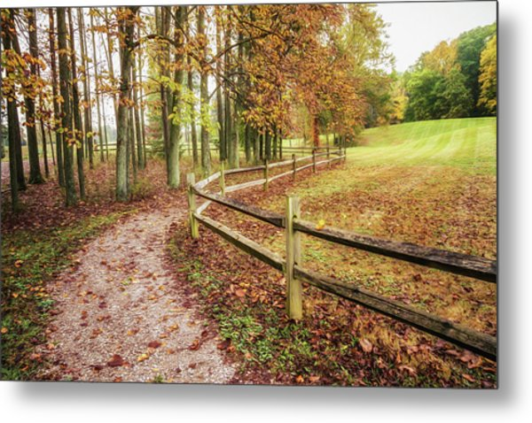 Strolling Through Autumn Metal Print