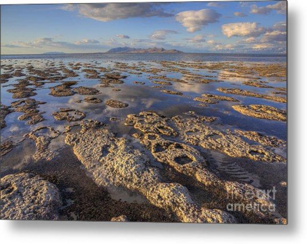 Stromatolites And Antelope Island Metal Print