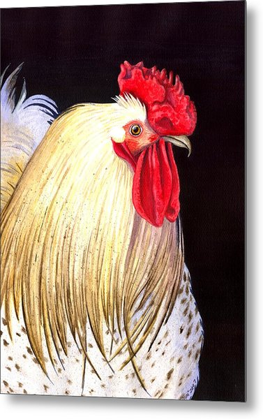 Studdley Metal Print by Catherine G McElroy
