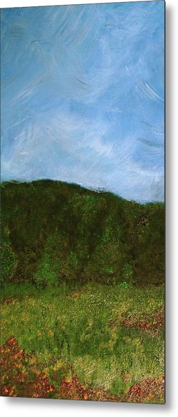 Study In Light Five Metal Print by Karen Fowler
