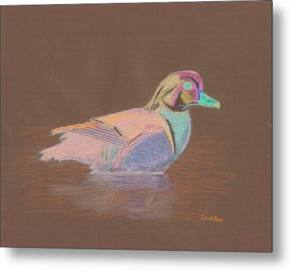 Study Of A Wood Duck Metal Print by Cynthia  Lanka