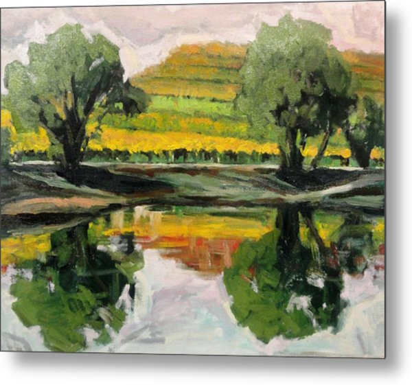 Study Of Reflections And Vineyard Metal Print