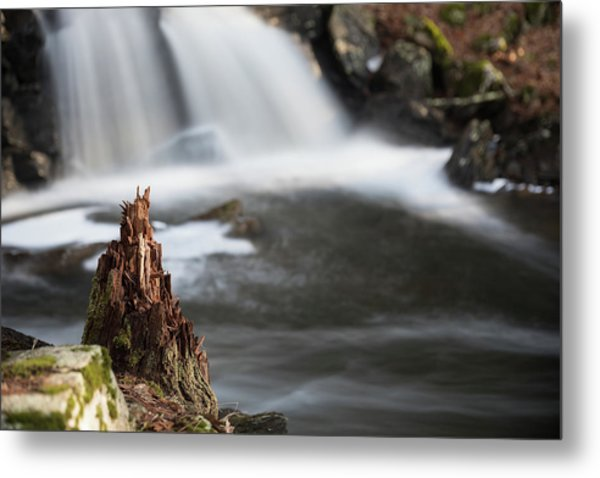 Stumped At The Secret Waterfall Metal Print