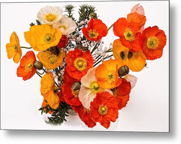 Stunning Vibrant Yellow Orange Poppies  Metal Print