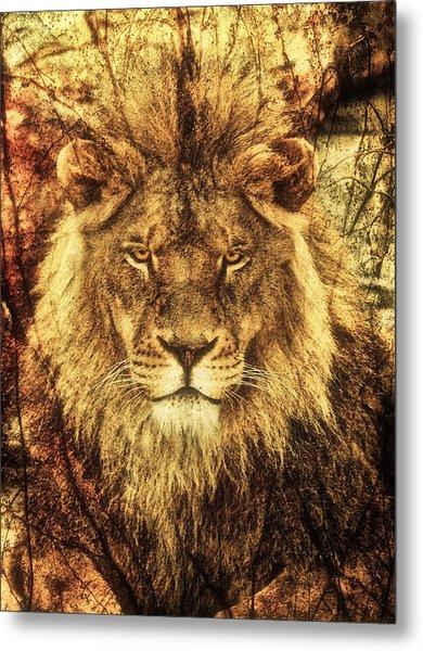 Subtle Lion Metal Print