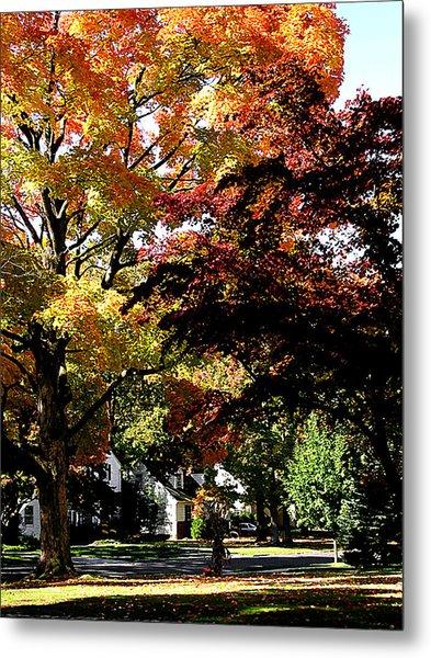 Suburban Autumn Metal Print by Susan Savad