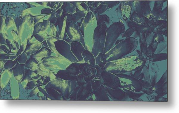 Succulents #2 Metal Print