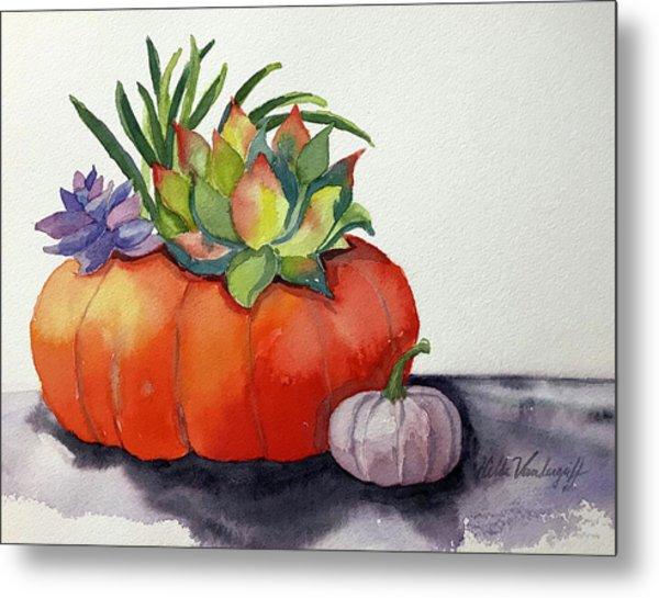 Succulents In Pumpkin Metal Print