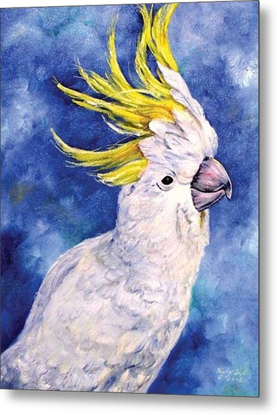 Sulphur-crested Cockatoo Metal Print