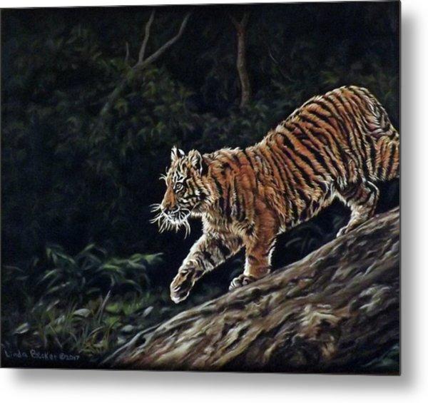 Sumatran Cub Metal Print