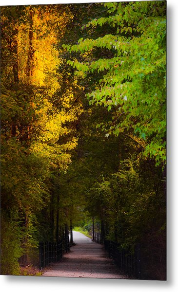 Summer And Fall Collide Metal Print