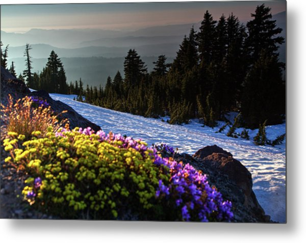 Summer And Winter Metal Print
