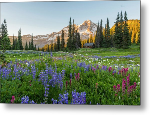 Summer Beauty At Indian Henry's Hunting Ground Metal Print