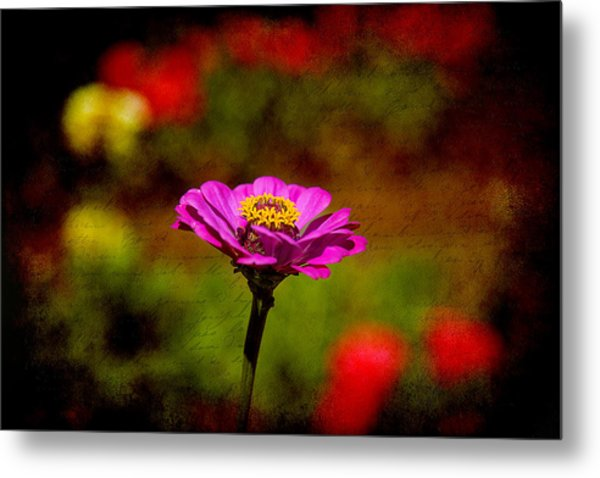 Summer Beauty Metal Print