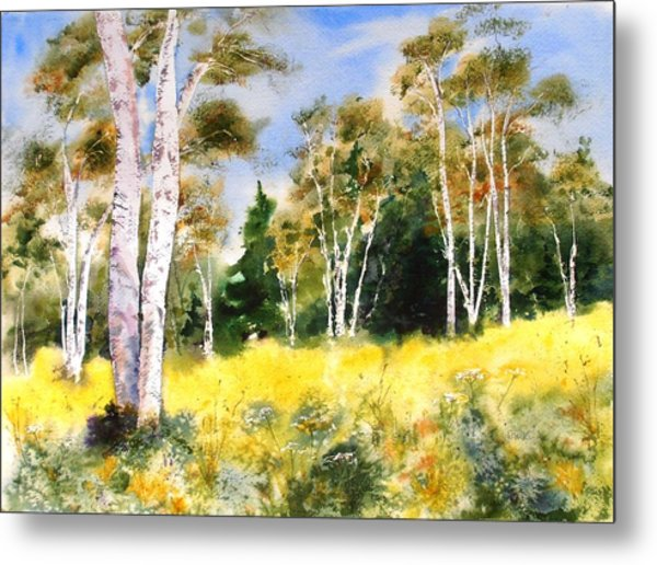 Summer Birches Metal Print