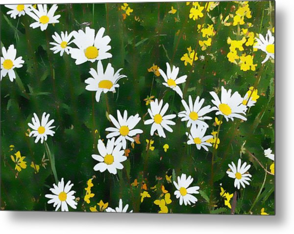 Metal Print featuring the digital art Summer Daisies by Julian Perry