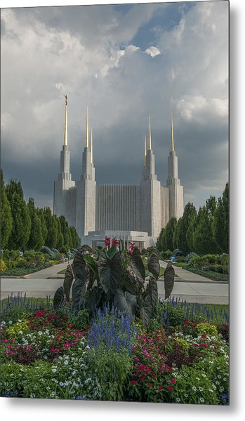 Summer Day At The Lds Metal Print