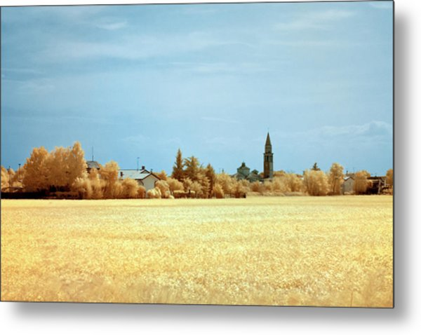 Metal Print featuring the photograph Summer Field by Helga Novelli