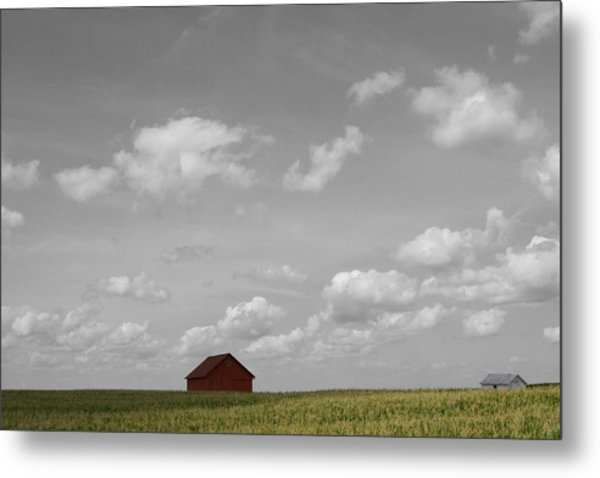 Summer Fields II Metal Print