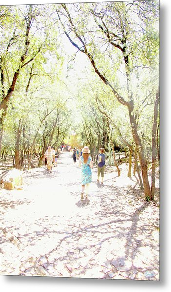 Metal Print featuring the photograph Summer Light Provence by Rasma Bertz