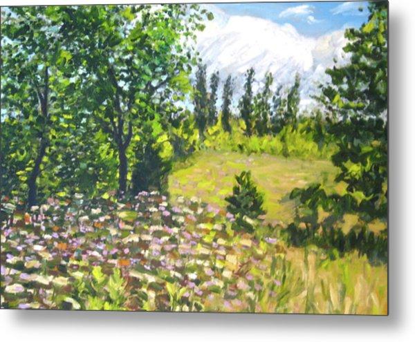 Summer Meadow Metal Print