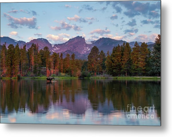 Summer On Sprague Lake Metal Print