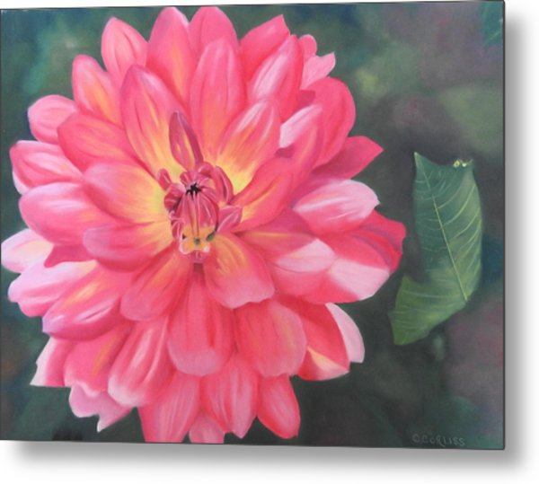 Summer Pinks Metal Print
