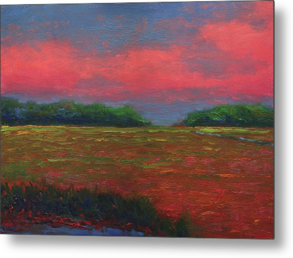 Summer Wetlands - Outlet Metal Print